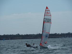 29er Sailing at it's best